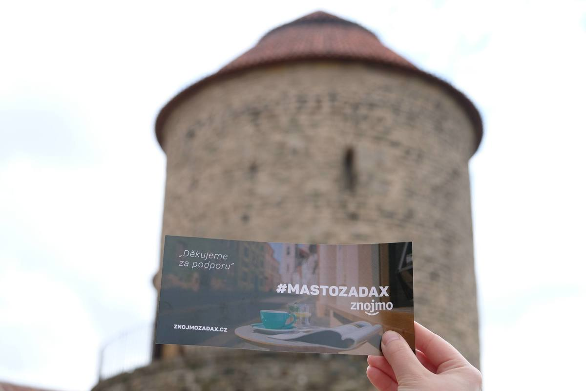#mastozadax